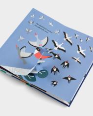 Six-little-birds4